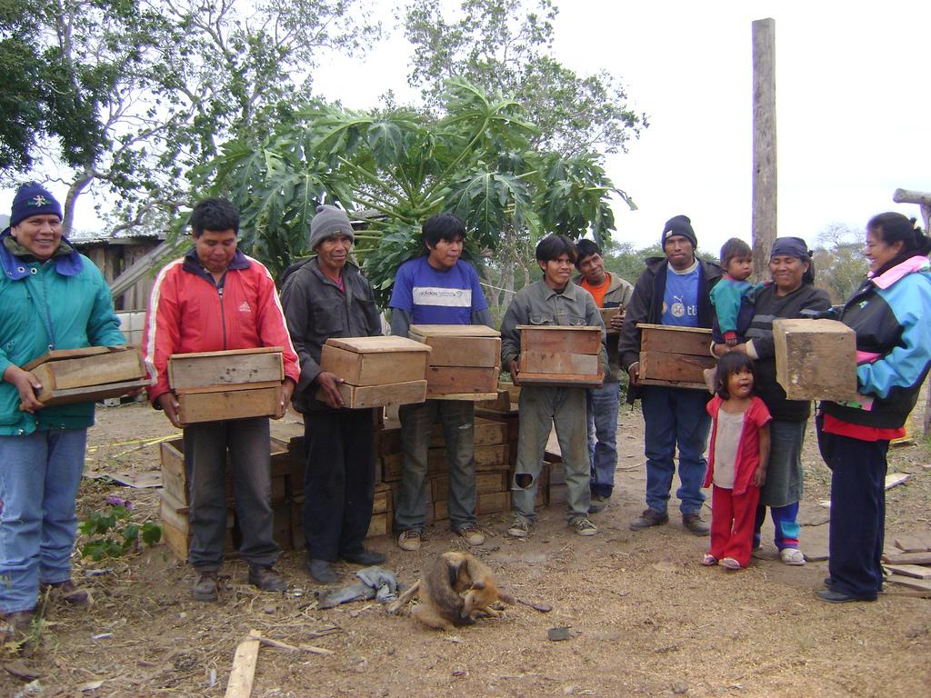 Meliponicultura en el Chaco Boliviano